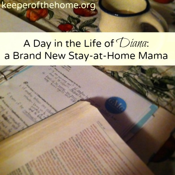 A-Day-in-the-Life-of-Diana-A-Brand-New-Stay-at-Home-Mama-at-Keeperofthehome.org_.png