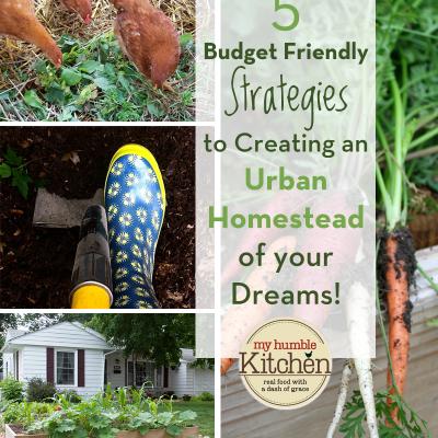 5 Budget Friendly Strategies to Creating an Urban Homestead