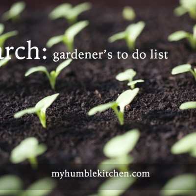 March Gardener's To Do List – Zone 5