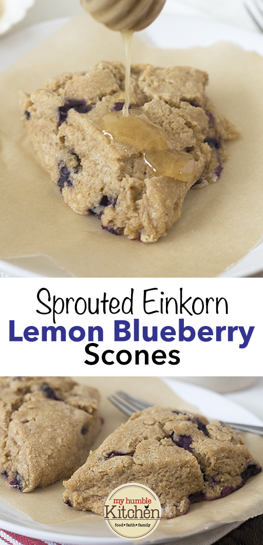 Sprouted Einkorn, Lemon Blueberry Scones