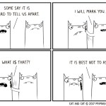 Cat and Cat Comic