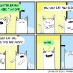 cat comic break