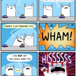 cat comic food