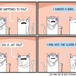 cat comic bird