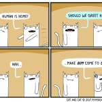 cat comic hard to get greet