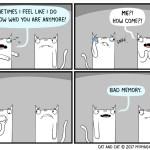 cat comic memory