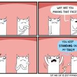 cat comic face