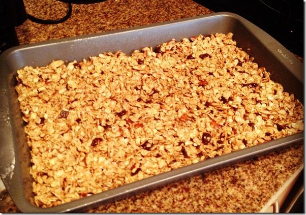 granola bars 002