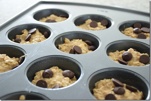 chocolate chip baked oatmeal muffins 003