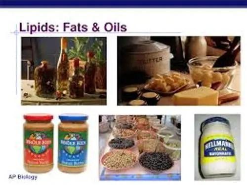 Examples Lipid Molecules