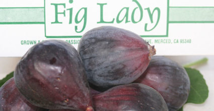 The End of The Fig Lady