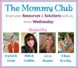The-Mommy-Club-300x263