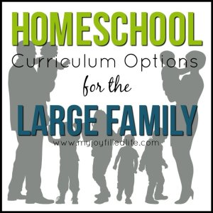 Homeschool Curriculum Options for the Large Family
