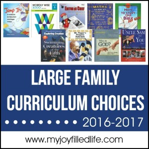 Large Family Homeschool Curriculum Choices 2016-2017