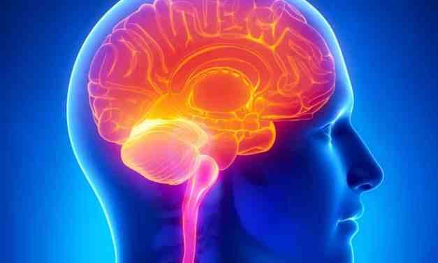 High Blood Sugar link to Alzheimer's Disease found in new Scientific Study