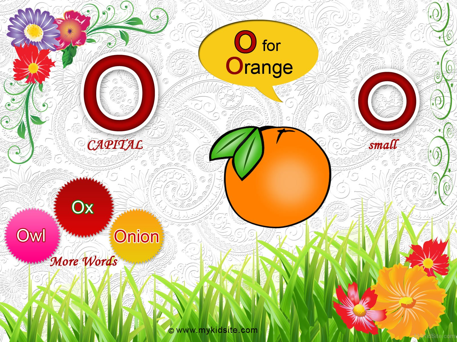 Alphabet Worksheet For Letter O