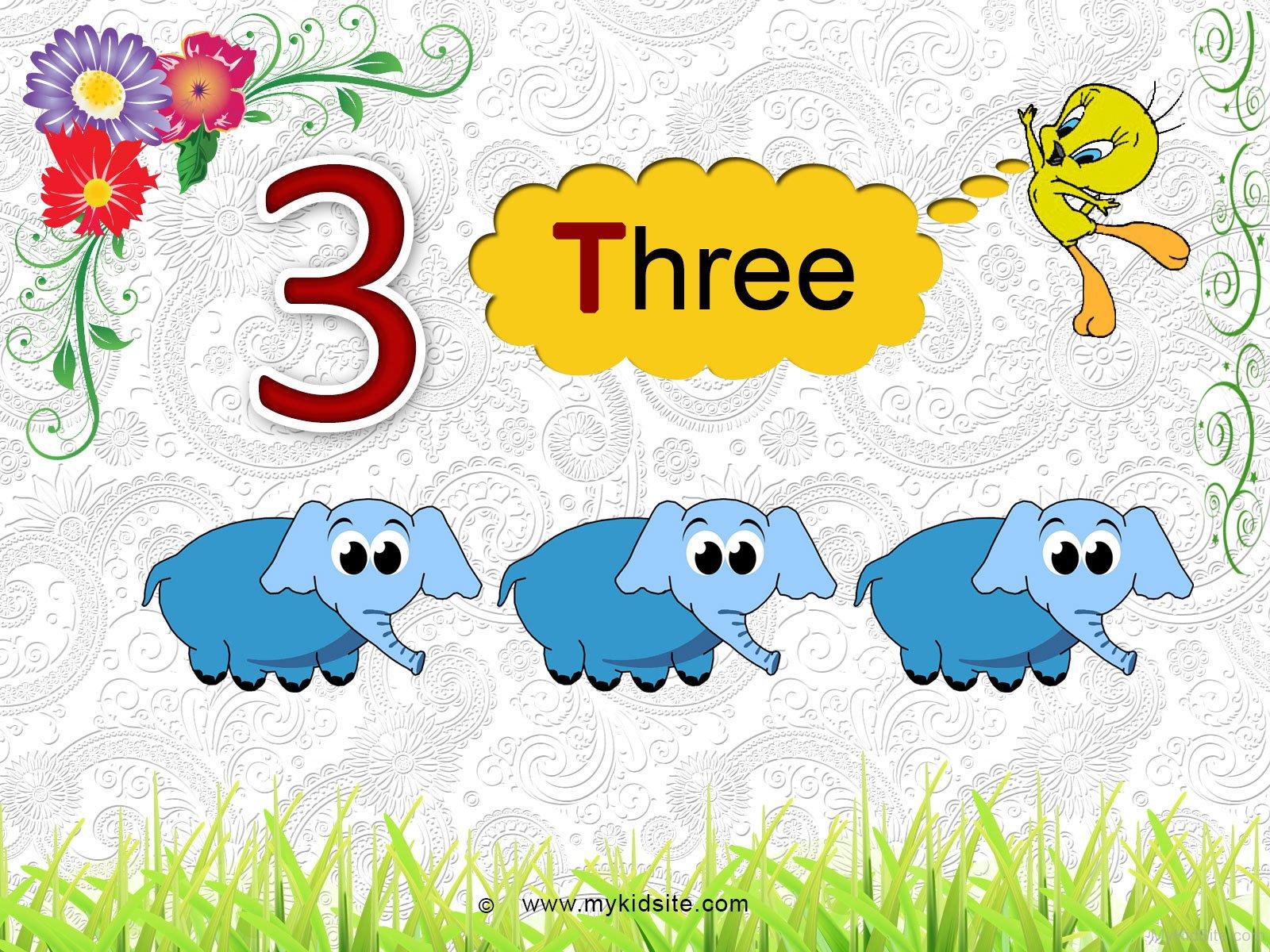 Number Worksheet For 3