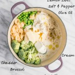 Gettin' Cheesy with it – One Pot Broccoli and 3 Cheese Pasta