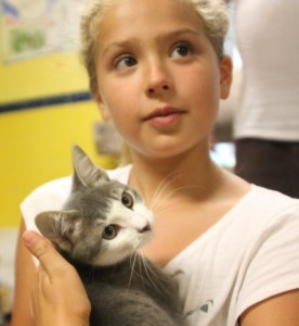 Kitten and girl at ARF (Animal Rescue Fund) photo by shari smith dunaif 2015