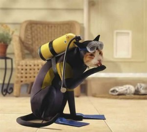 scuba cat kitty halloween costume