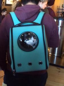 cat carrier backpack with bubble window