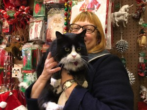 Christmas cat at Reminiscence
