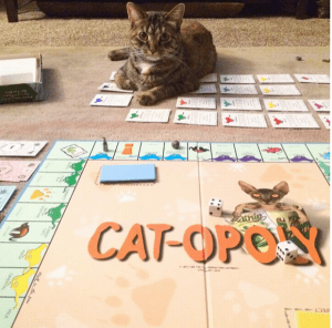 Cat board game catopoly