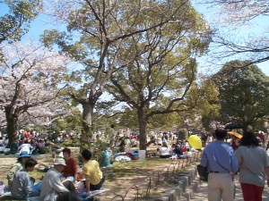 People in Akashi Park