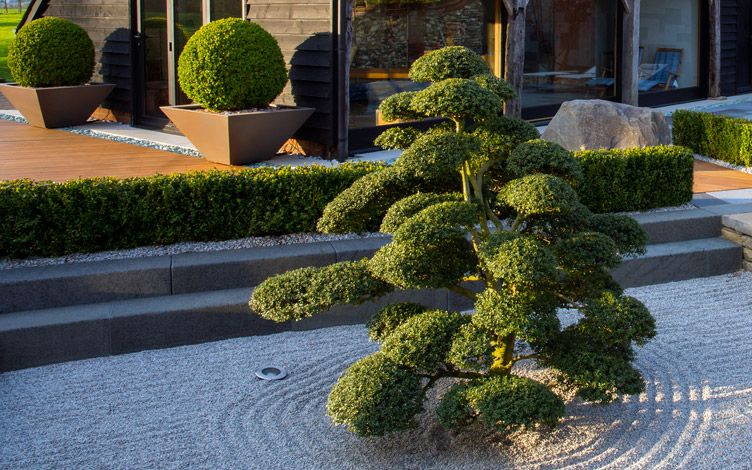 Landscape garden design | Mylandscapes large contemporary ... on Landscape Garden Designs For Small Gardens id=89978
