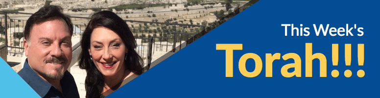 This Week's Torah by Myles and Katharine Weiss
