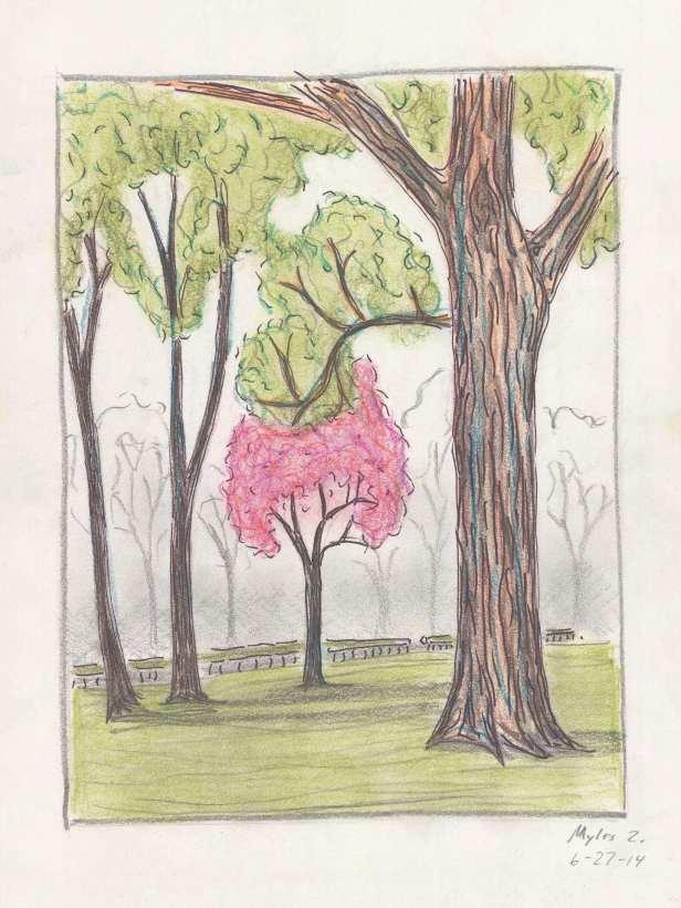6-27-2014 arboretum of ann arbor