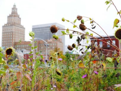 Urban Garden with Rutgers Law School in Background
