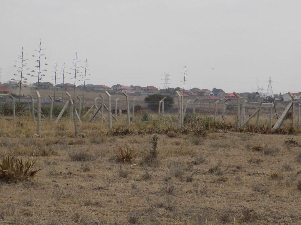 Katani Land