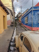 streets of flores