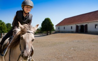How to buy a horse for your kids or grandkids