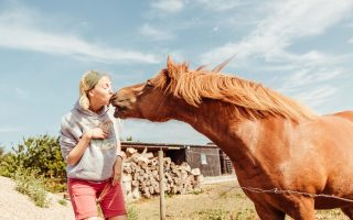 What is it like to own a horse?