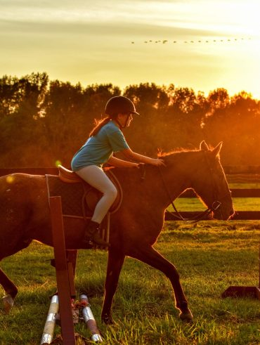 How to buy a family horse that the whole family can use