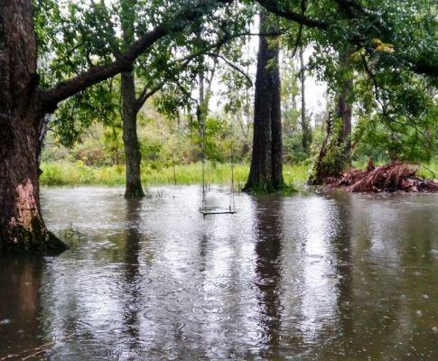 Tigre Delta: Wann kommt die Flut?
