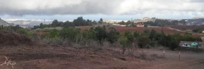 landschaft-finca-de-osorio-teror-las-palmas-2.jpg