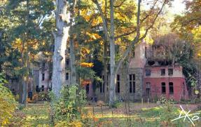 Ein Foto einer Beelitz-Heilstätten Ruine vom Boden aus