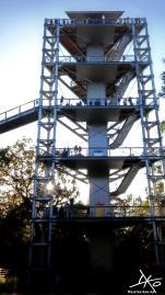 Über ein Gerüst aus Stahl mit Treppen, so sieht der Aufstieg zum Baumkronenpfad und der Aussichtsplattform aus.