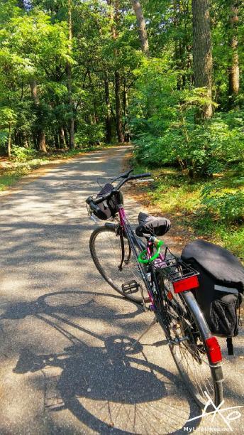 Fahrrad auf Waldweg