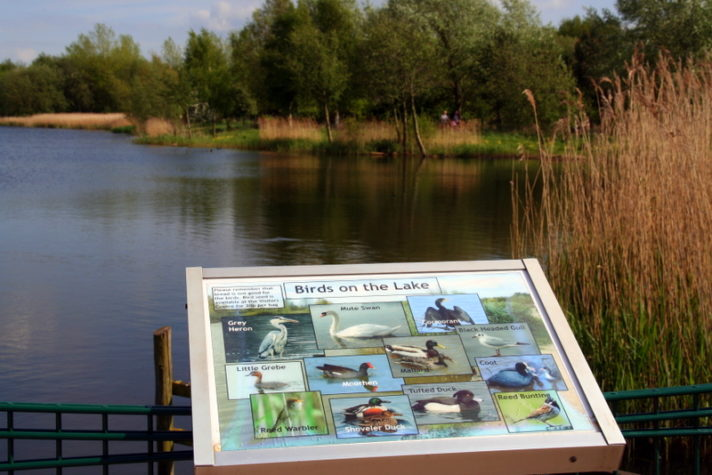 Rushcliffe Country Park is one of the best days out in Nottingham and definitely one of the best parks in the city. There is so much to do here on a sunny day with the emphasis being on nature for kids.