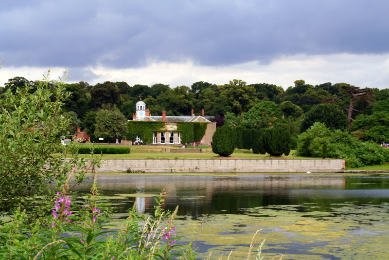 lake view at Clumber park Nottingham