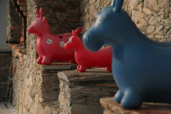 Rubber Donkeys - Pool Toys