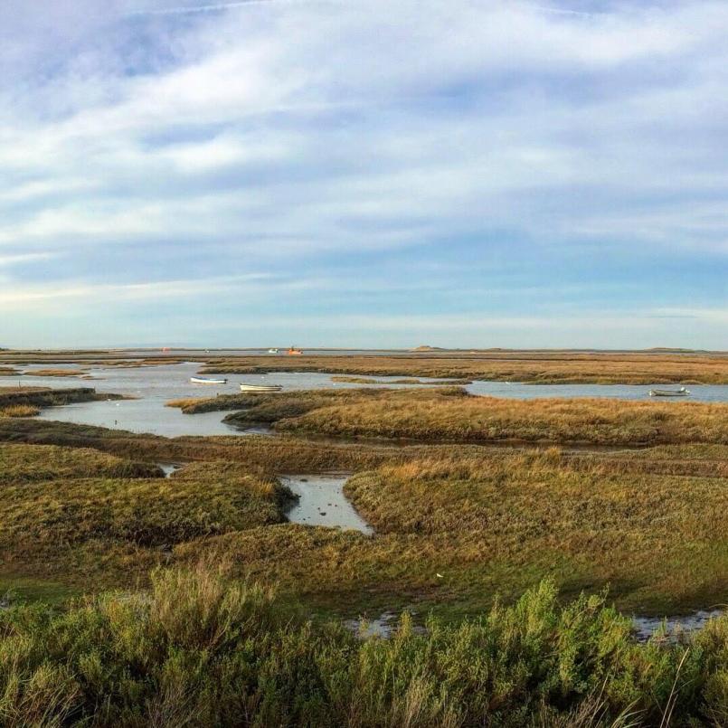 The Norfolk coastline is full of beautiful scenery including salt flats and bird sanctuarys