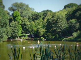 Wild Swimming. Hampstead Heath ladies' pond