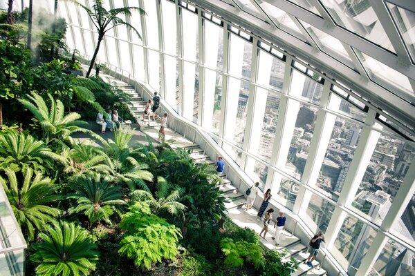 The London Sky Garden has 360 views of the city