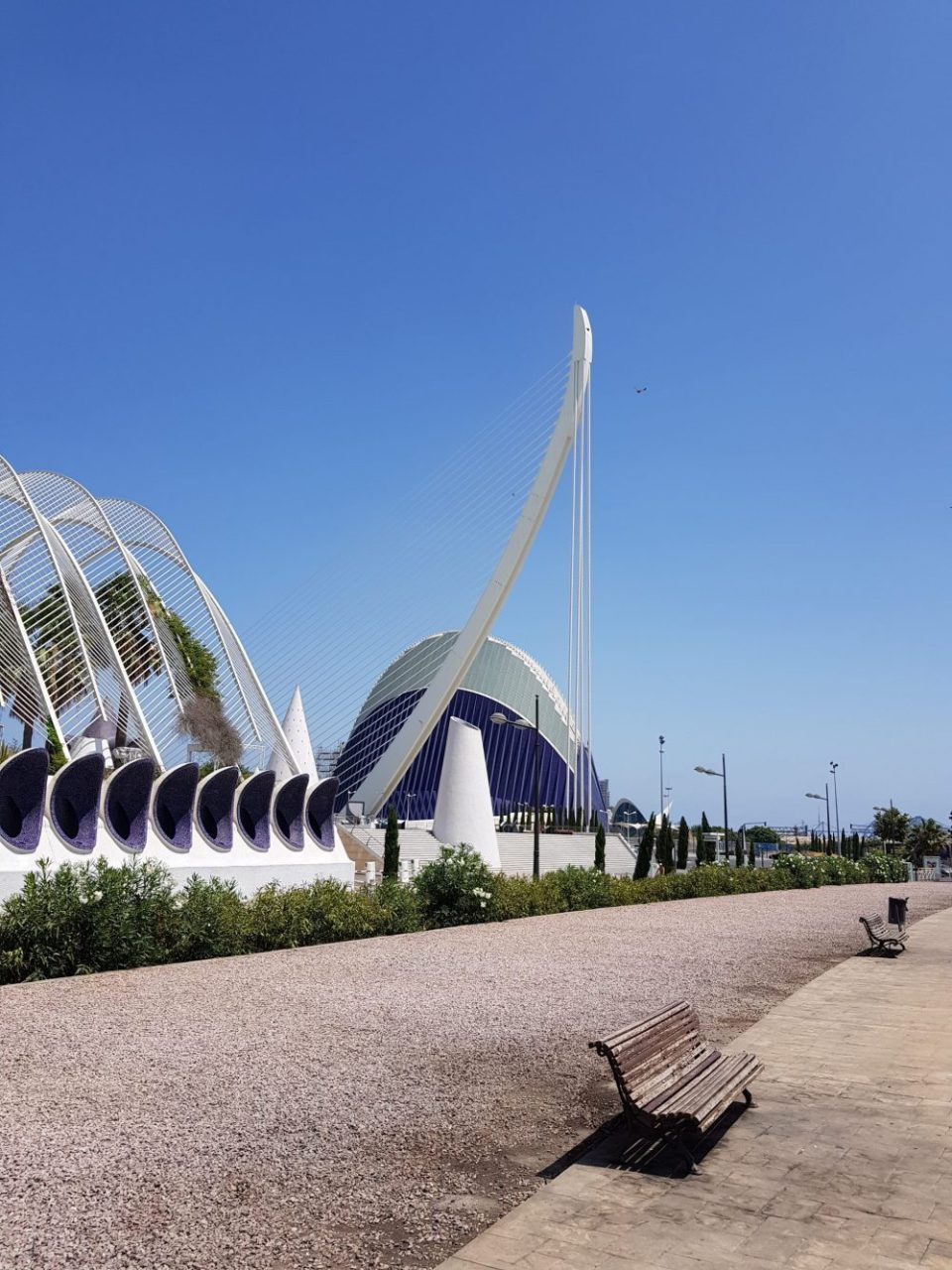 View of L'Umbracle, El Pont de l'Assut de l'Or , and L'Àgora