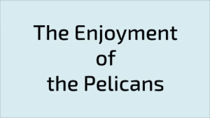 The Enjoyment of the Pelicans
